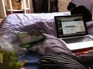 Unwell in bed, laptop, grapes, cat