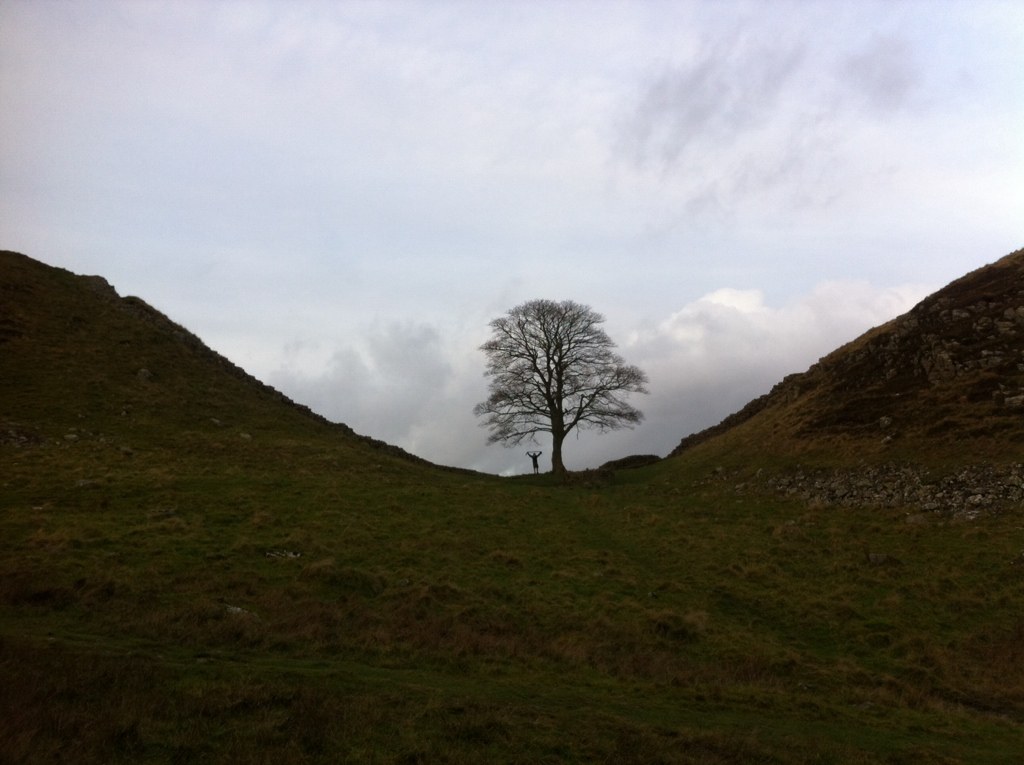 Hadrian's Wall - Sycamore Gap.jpg